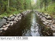 Купить «Соловецкие острова. Каналы между озерами.», фото № 1151988, снято 12 сентября 2009 г. (c) Михаил Ворожцов / Фотобанк Лори