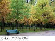 Купить «Осень в парке Павловска», фото № 1158004, снято 30 сентября 2009 г. (c) Наталья Белотелова / Фотобанк Лори