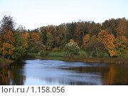 Купить «Осень в парке Павловска», фото № 1158056, снято 30 сентября 2009 г. (c) Наталья Белотелова / Фотобанк Лори