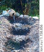 Водопад в саду. Стоковое фото, фотограф Окунева Светлана / Фотобанк Лори