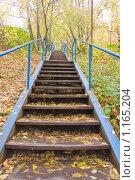 Купить «Лестница в осень», фото № 1165204, снято 10 октября 2009 г. (c) Илюхина Наталья / Фотобанк Лори