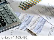 Купить «Калькулятор и финансовый отчет, рабочее место бизнесмена», фото № 1165480, снято 3 октября 2009 г. (c) Сергей Галушко / Фотобанк Лори