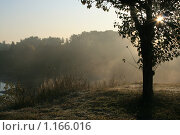 Купить «Утренний туман», фото № 1166016, снято 20 сентября 2009 г. (c) Эльвира Максимова / Фотобанк Лори