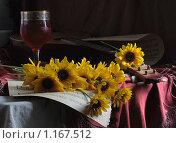 Купить «Дебют», фото № 1167512, снято 19 июня 2019 г. (c) Марина Володько / Фотобанк Лори