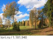 Осень в центре отдыха и здоровья Дёмино. Стоковое фото, фотограф Дмитрий Земсков / Фотобанк Лори