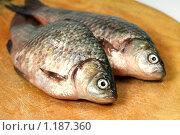 Купить «Речная рыба карась на разделочной доске», фото № 1187360, снято 23 октября 2009 г. (c) ElenArt / Фотобанк Лори