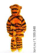 Купить «Ребенок в костюме тигренка. Вид сзади», фото № 1189848, снято 3 ноября 2009 г. (c) Ирина Солошенко / Фотобанк Лори