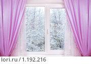 Купить «Зима из окна», фото № 1192216, снято 25 декабря 2008 г. (c) Алена Роот / Фотобанк Лори
