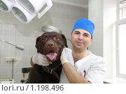 Купить «Ветеринарный врач с пациентом в операционной», фото № 1198496, снято 7 июля 2009 г. (c) Галина Бурцева / Фотобанк Лори