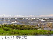 Купить «Берег Чудского озера», фото № 1199392, снято 3 октября 2009 г. (c) Галина Ермолаева / Фотобанк Лори