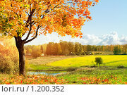 Купить «Осенний пейзаж», фото № 1200352, снято 3 октября 2009 г. (c) Евгений Захаров / Фотобанк Лори