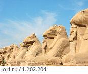 Купить «Аллея бараноголовых сфинксов. Карнак, Египет.», фото № 1202204, снято 18 ноября 2008 г. (c) Одиссей / Фотобанк Лори