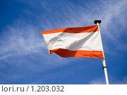 Флаг Австрии. Стоковое фото, фотограф Петр Кириллов / Фотобанк Лори
