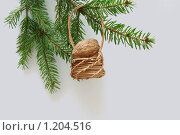 Витая корзинка. Стоковое фото, фотограф Качанов Владимир / Фотобанк Лори