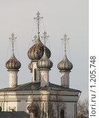 Купить «Купола церкви Скретения (Вологда, Россия)», фото № 1205748, снято 31 марта 2009 г. (c) Екатерина Туркина / Фотобанк Лори