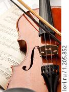 Купить «Скрипка  на нотной тетради», фото № 1205852, снято 27 августа 2009 г. (c) Мельников Дмитрий / Фотобанк Лори