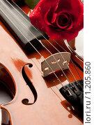 Купить «Скрипка и роза на белом фоне», фото № 1205860, снято 27 августа 2009 г. (c) Мельников Дмитрий / Фотобанк Лори