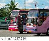 Купить «Стоянка розовых автобусов», фото № 1217280, снято 28 октября 2008 г. (c) Катя Белякова / Фотобанк Лори