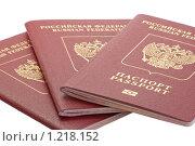 Купить «Паспорта Российской Федерации», фото № 1218152, снято 14 ноября 2009 г. (c) Slasha / Фотобанк Лори