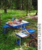 Пикник в лесу (2009 год). Редакционное фото, фотограф lana1501 / Фотобанк Лори