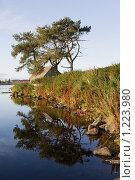 Купить «Соловецкие острова. Берег святого озера», фото № 1223980, снято 14 сентября 2009 г. (c) Михаил Ворожцов / Фотобанк Лори