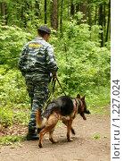 Купить «Милицейский патруль с собакой в Битцевском лесопарке», эксклюзивное фото № 1227024, снято 21 мая 2009 г. (c) Щеголева Ольга / Фотобанк Лори