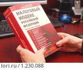 Купить «Налоговый кодекс в руках бухгалтера», фото № 1230088, снято 20 ноября 2009 г. (c) Бассейн Максим Юрьевич / Фотобанк Лори