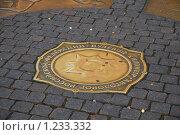 Купить «Бронзовый знак нулевого километра автодорог Российской Федерации», эксклюзивное фото № 1233332, снято 12 июля 2009 г. (c) Алёшина Оксана / Фотобанк Лори