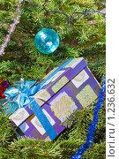 Купить «Подарок под новогодней елкой», фото № 1236632, снято 18 января 2009 г. (c) Куликов Константин / Фотобанк Лори