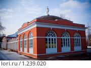 Усадьба Воронцово (2008 год). Редакционное фото, фотограф Алексей Ледовской / Фотобанк Лори