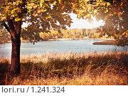 Осенний пейзаж. Стоковое фото, фотограф Евгений Захаров / Фотобанк Лори