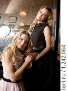 Купить «Сестры Татьяна и Ольга Арнтгольц», фото № 1242064, снято 20 ноября 2008 г. (c) Elena Rostunova / Фотобанк Лори