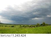 Купить «Перед грозой», фото № 1243424, снято 2 июня 2009 г. (c) Елена Ильина / Фотобанк Лори