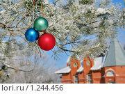 Купить «Сосновая ветка с елочными игрушками. Новогоднее украшение.», фото № 1244456, снято 6 декабря 2019 г. (c) A Челмодеев / Фотобанк Лори