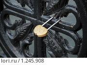 Символ вечной любви. Стоковое фото, фотограф Владимир Тарасов / Фотобанк Лори