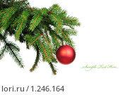 Купить «Еловая ветка с новогодней игрушкой  изолированно на белом», фото № 1246164, снято 27 ноября 2009 г. (c) Виталий Радунцев / Фотобанк Лори