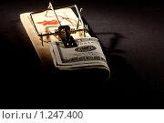 Купить «Мышеловка с деньгами», фото № 1247400, снято 16 октября 2009 г. (c) Кравецкий Геннадий / Фотобанк Лори