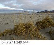 Северный пляж (2009 год). Стоковое фото, фотограф Зоя Степанова / Фотобанк Лори