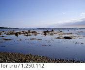 Купить «Отлив на побережье Белого моря (Соловки)», фото № 1250112, снято 23 августа 2009 г. (c) Самойлова Екатерина / Фотобанк Лори