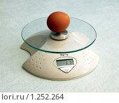 Купить «Яйцо на электронных весах», фото № 1252264, снято 11 октября 2009 г. (c) Александр Романов / Фотобанк Лори
