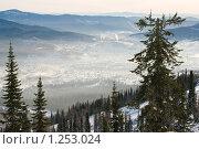 Деревья в горах. Стоковое фото, фотограф Лагутин Сергей / Фотобанк Лори