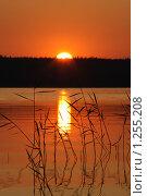 Купить «Закат над озером», фото № 1255208, снято 28 июня 2009 г. (c) Валуйкин Сергей / Фотобанк Лори