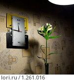 Часы и цветок в интерьере под лампой. Стоковое фото, фотограф Михаил Пименов / Фотобанк Лори