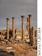 Купить «Сирия. Босра. Руины древнего города», фото № 1261664, снято 29 октября 2009 г. (c) Maria Kuryleva / Фотобанк Лори