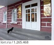 Администрация г. Майкопа и ее самый важный посетитель (2009 год). Стоковое фото, фотограф Степаненко Сабина / Фотобанк Лори