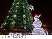 Купить «Новогодняя городская елка ночью со снеговиком», фото № 1268416, снято 24 декабря 2008 г. (c) Андрей Емельяненко / Фотобанк Лори