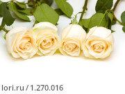 Купить «Розы», фото № 1270016, снято 8 марта 2008 г. (c) Elnur / Фотобанк Лори
