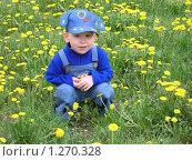 Купить «Мальчик в одуванчиках», фото № 1270328, снято 19 мая 2005 г. (c) Землянникова Вероника / Фотобанк Лори