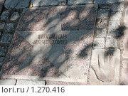 Купить «Звезда Вячеслава Тихонова на Аллее звезд в г.Выборге», фото № 1270416, снято 21 августа 2009 г. (c) Татьяна Иванова / Фотобанк Лори