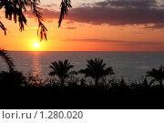 Египет. Восход солнца на Красном море (2009 год). Стоковое фото, фотограф Павел Красихин / Фотобанк Лори